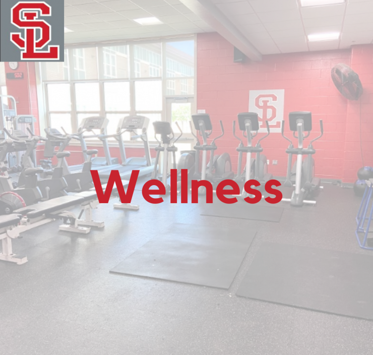 Wellness Department Page Link